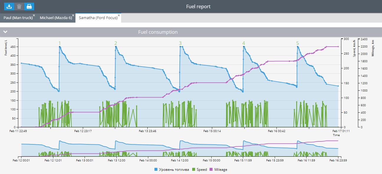 Enhanced fuel consumption report